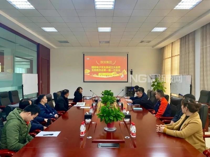 醴陵旗滨电子玻璃有限公司召开党支部成立大会