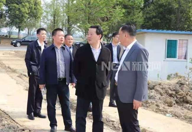 凯盛科技集团党委书记彭寿赴宜兴新能源考察指导